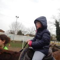 Do(w)nkeys: a Cremona gli asinelli aiutano i disabili mentali