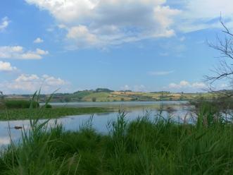 Paesaggio sulla antica palude