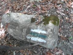 I segnali bianchi e verdi che indicano il nostro sentiero